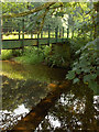 NY4449 : Footbridge, River Petteril by Andrew Smith