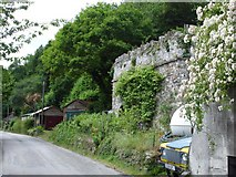 SX4268 : Lime Kiln, Calstock by Penny Mayes