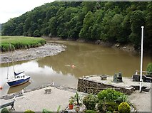SX4268 : Sharp bend on the Tamar by Penny Mayes