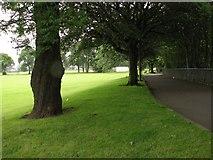 NT2273 : Roseburn Park by Callum Black