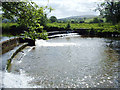 SD6691 : River Rawthey, Sedbergh by michael ely