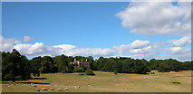 ST5295 : Piercefield House and parkland by Roy Parkhouse