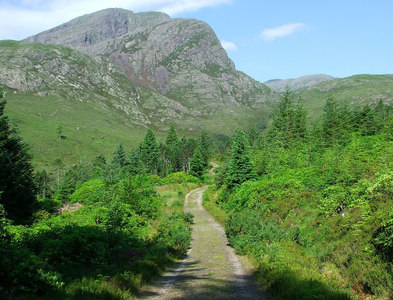 NG9948 : Footpath above Achnashellach by David Maclennan
