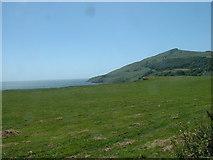SH2428 : Clifftop field near Rhiw by David Medcalf