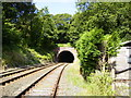 SD2171 : Railway tunnel near Furness Abbey by Phil Catterall