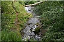 J3996 : Above Glenoe waterfall by Albert Bridge