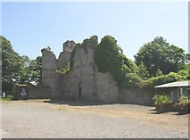 S7114 : Dunbrody Castle, Co. Wexford by Humphrey Bolton