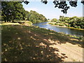 NY4156 : River Eden in Rickerby Park by Clive Nicholson
