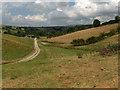NY5443 : Farmland, Staffield by Andrew Smith