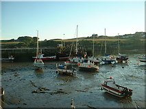 NX4736 : Isle of Whithorn Harbour by David Medcalf