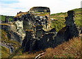 SX0589 : Tintagel Castle Ruins by Pam Brophy
