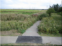 TQ5479 : Aveley Marshes by Nigel Cox