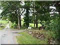 NY6317 : Entrance to Trainlands Farm. by mauldy