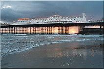 TQ3103 : Palace Pier by Catherine Morgan
