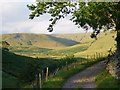 NY6532 : Kirkland Fell from the hamlet of Kirkland by Hugh Chevallier