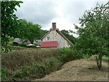 SY1988 : The Old Bakery, Branscombe by Rich Tea