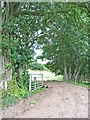 NY6822 : Farm road at Esplandhill, Brampton by Oliver Dixon