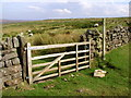 SE8098 : Footpath to Wheeldale Beck by Andy Beecroft