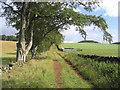 NT5031 : Farmland Track by Walter Baxter