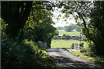 ST2509 : Yarcombe: bridge over the Yarty by Martin Bodman
