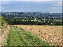 TQ6761 : Looking across field to Birling Church by Pip Rolls