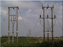 TF0744 : Primitive Pylons Nr Sleaford, Lincs by Tim Hallam