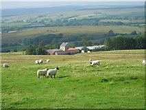 NY5676 : Park Head Farm, Bewcastle by Les Hull