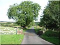 NY5570 : Cattle grid at Parkgate Cottages by Oliver Dixon
