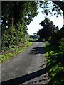 TR0050 : Church Lane, Challock by Penny Mayes
