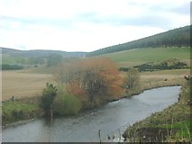 NJ4716 : River Don at Milltown of Kildrummy (October) by Stanley Howe
