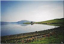 NG2260 : Ardmore Bay by Carol Walker