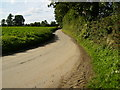 SE7676 : The lane from Ryton near Great Habton village by Phil Catterall