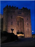 R4560 : Bunratty Castle at night by Peter Craine