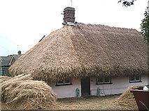 TL9927 : Thatching in progress, Mile End. by John Myers