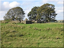 NS6725 : Knowehead, old enclosure and farm buildings by Chris Wimbush