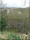 NZ0416 : Looking across the River Tees by Stanley Howe