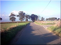 TM3656 : School Road, Blaxhall by Adrian Cable