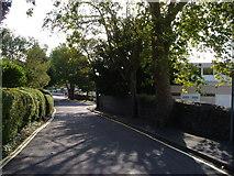 SX9065 : St Vincent's Road, Torquay by Derek Harper