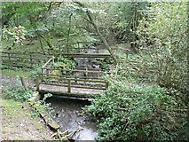 SE2741 : Stream below the lake, Golden Acre Park by Rich Tea