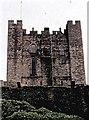 NU1835 : Bamburgh Castle by Stanley Howe