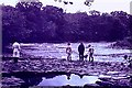 NZ1214 : River Tees at Ovington by Stanley Howe