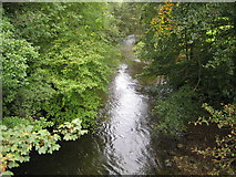 S4214 : Clodiagh River by Nigel Cox
