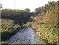 SJ9075 : River Bollin by michael ely