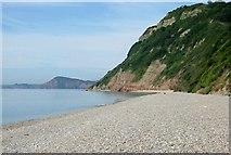 SY1687 : On the Beach at Weston Mouth by Tony Atkin