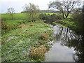 SU1194 : River Thames near Eysey by Nigel Cox