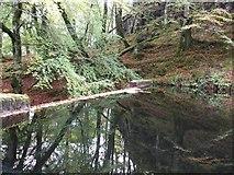 NM4339 : Dam on Ulva by Rob Farrow
