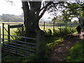 NY0113 : Coast-to-Coast Path, near Cleator by Dave Dunford