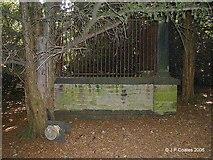 SE1721 : Robin Hood's Grave by John P Coates