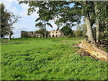 ST5295 : Ruins at Piercefield House Chepstow by Clive Perrin