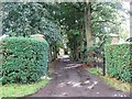 TG0901 : The Driveway To Beck Farm, Dykebeck by Roger Gilbertson